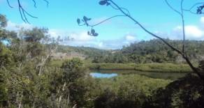 tea009 – Área no Rio do Céu