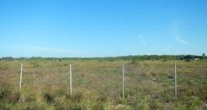 tea014 – Área em Barra Grande
