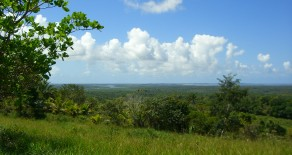 Fazenda Cinco Nascentes em Camamu, Bahia, Brasil