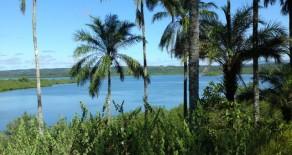 ilh010 – Coconut Island