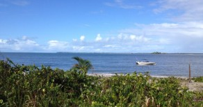 tea017 – Beach Plot in Sharks' Island, Camamu Bay, Bahia, Brazil