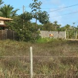 tel016 – Incredible Land Plots in The Coast Development, Maraú, Bahia, Brazil